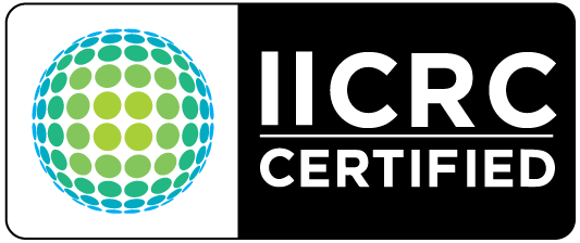 Institution of inspection and carpet restoration certification